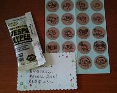 DSC_3331.JPG